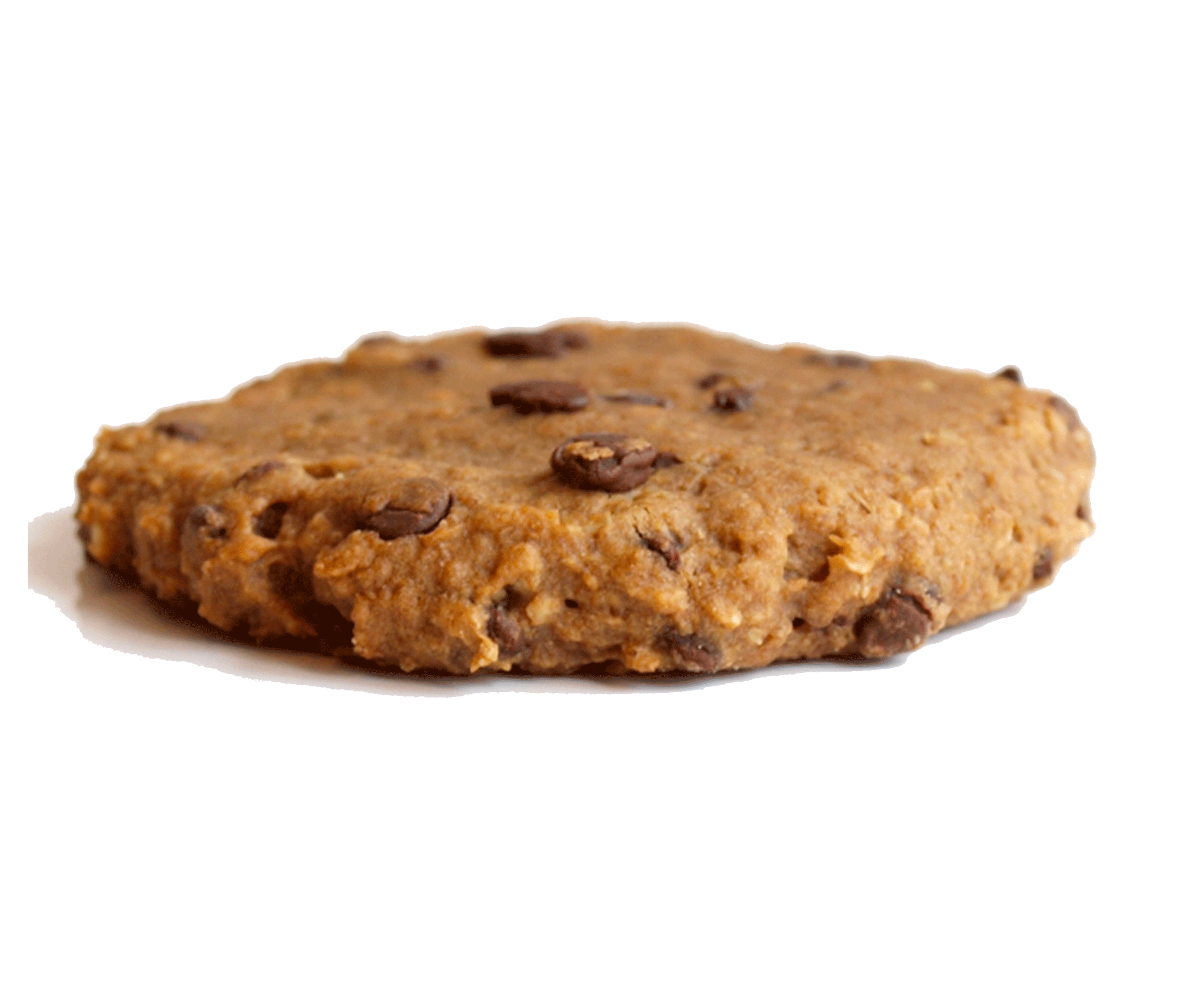 Oatmeal Cookie- made of healthy ingredients. Delicious healthy dessert.